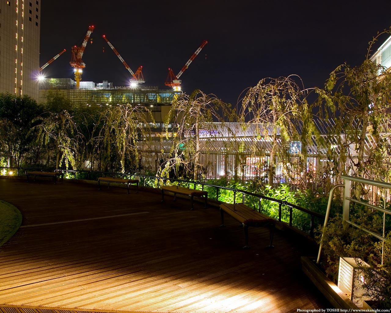 円形広場の夜景3