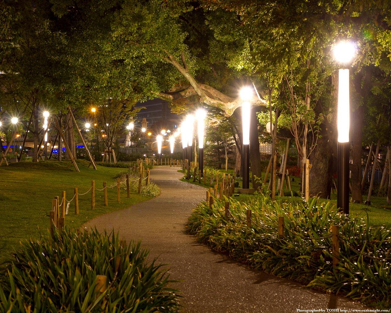 中之島公園の遊歩道