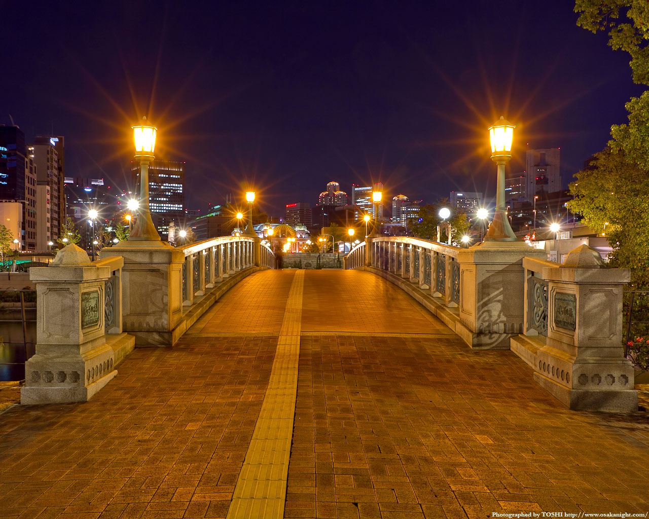 ばらぞの橋夜景2